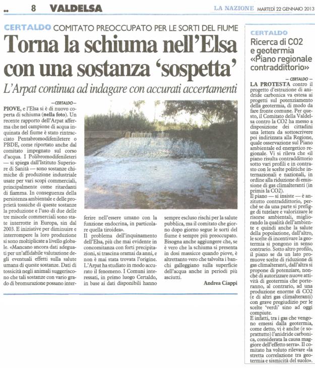 2013.01.22 La Nazione_schiuma e CO2